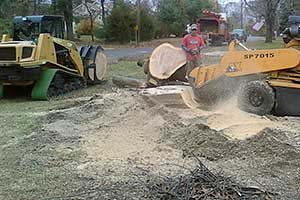 Land Clearing and Excavation Services in South Jersey