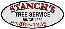 Stanch's Tree Service